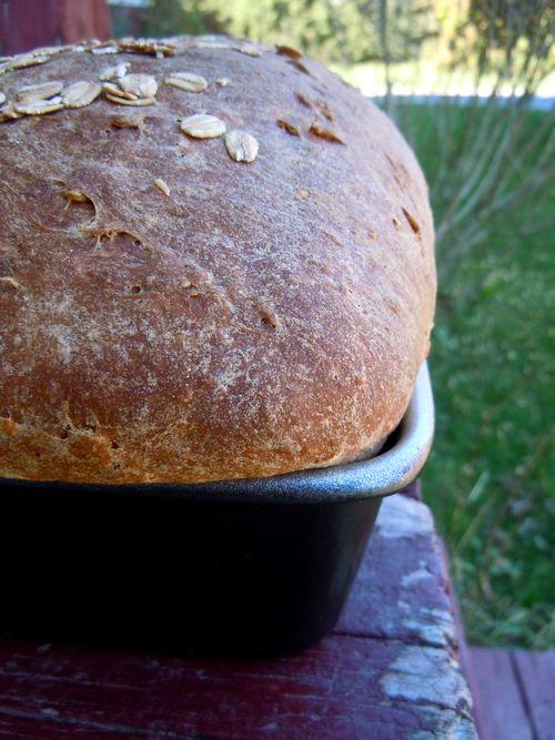Whole wheat and oatmeal loaf